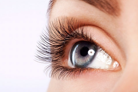 Eye Lash Extensions Kitchener