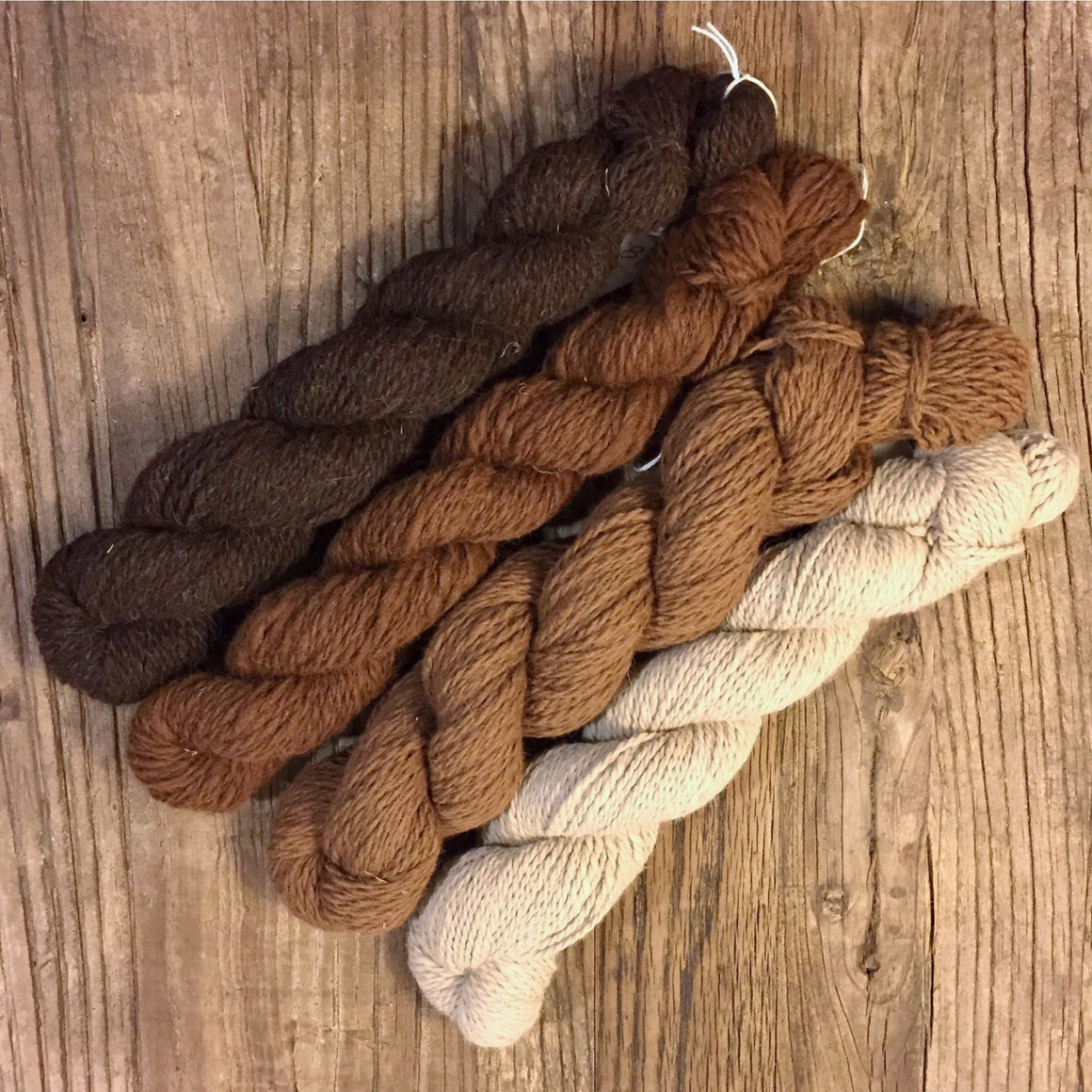 WW Ranch Yarn Skeins
