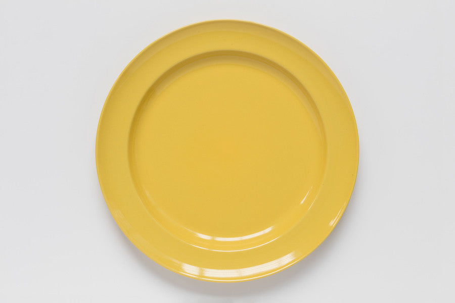 Dinner Plate : picture dinner plate - pezcame.com
