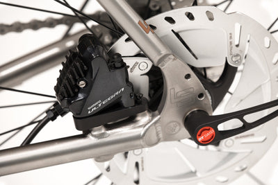 Detail image of rear disc brake