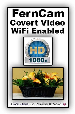 Fern Hidden Video Camera System with WiFi