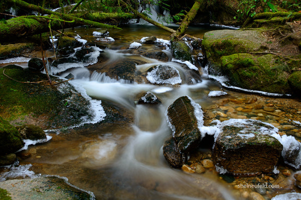 Beautiful water stream from roberts creek, bc, canada captured by Shel Neufeld of WildArt Photography