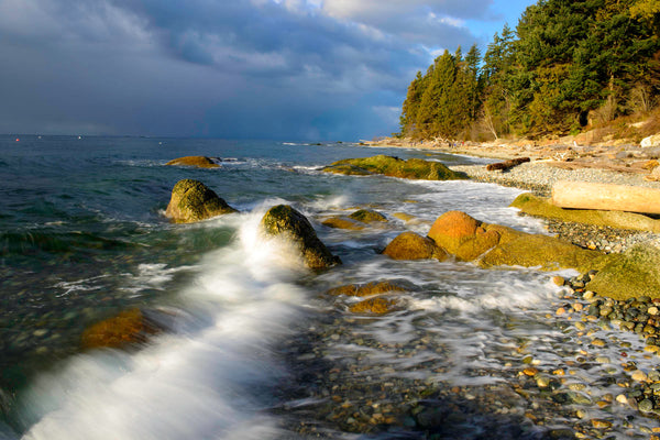 Flume Beach, Roberts Creek, Canada - Pacific Northwest Coastal Wall Art by Shel Neufeld