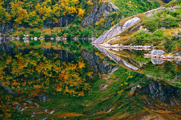 Autumn Reflections, Gros Morne Park, NFLD