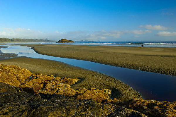 Long Beach, Tofino, Vancouver Island, BC by Shel Neufeld Nature Photograph