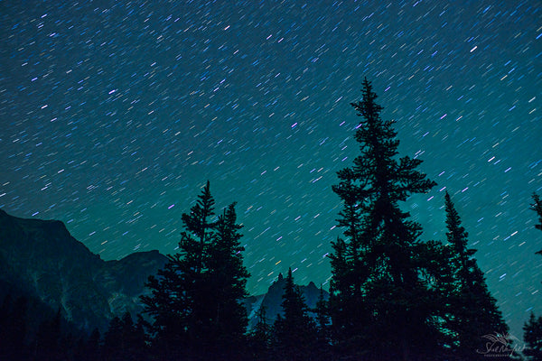 Tall rocky mountains extend to the sky with tree silhouettes in the foreground. In the background is a starry night that fills the sky. The photograph was taken with a long time exposure to show the movement in the stars. The photograph is blue and green. It is available for sale as a canvas or a print by Shel Neufeld, of Roberts Creek, BC, Canada.