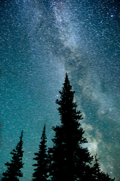 Astrophotography - the milky way photography print - starry night sky canvas by Shel Neufeld