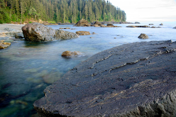 Sombrio, Vancouver Island British Columbia Canada, Coastal Photography by Canadian Photographer Shel Neufeld