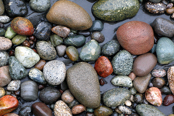 stone beach photography west coast canada by Shel Neufeld