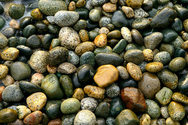 Stones at Henderson Beach, BC, Canada - Beach photography print by Shel Neufeld. Zen Home decor