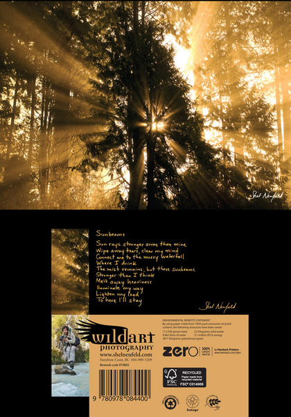 Golden sunbeam and tree silhouette photography nature blank greeting card by Shel Neufeld. On the back of the card, Shel gives a short poem about his connection to the photograph.