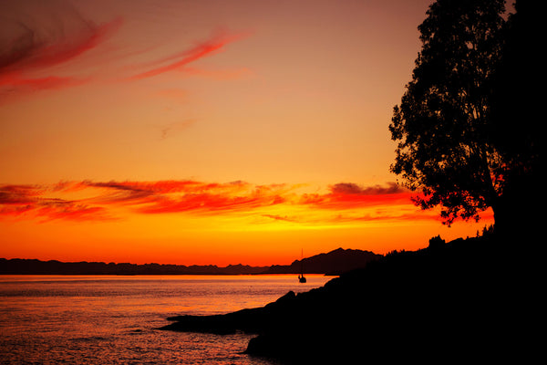 orange and red sunset beach photography - seascape wall art by Shel Neufeld of Canada