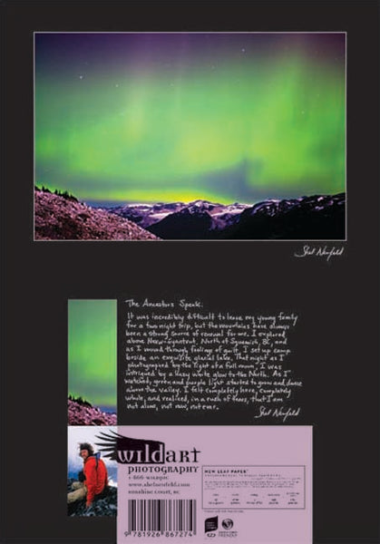 Green Glowing Northern Lights over Mountain Landscape photography blank greeting card by Shel Neufeld