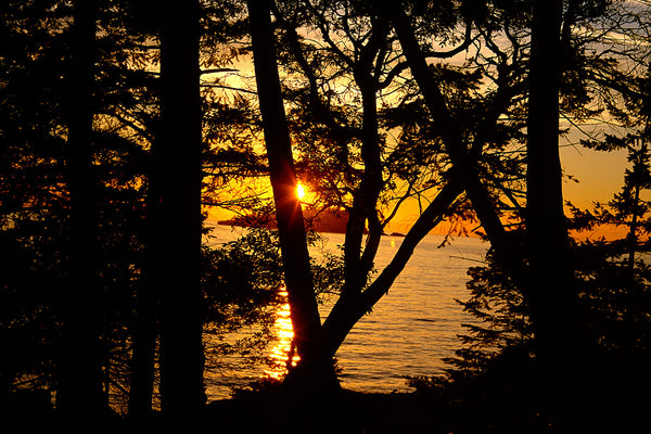 Bowen Island Sunset, British Columbia, Canada - Wild Art Photography Print by Shel Neufeld