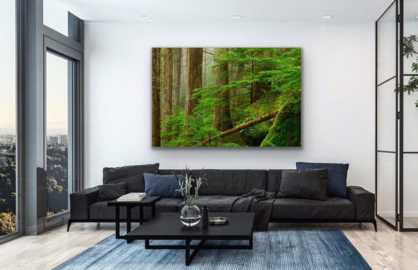 Lush green landscape photography wall art by Canadian photographer, Shel Neufeld