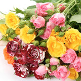 Spray Roses Assorted