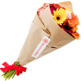 Overjoyed (Single Variety Hand-Tied Bouquets) - BloomsyShop.com