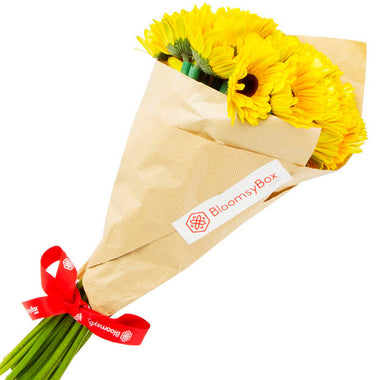 Sunny (Single Variety Hand-Tied Bouquets)