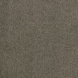 Sprinter carpet gray