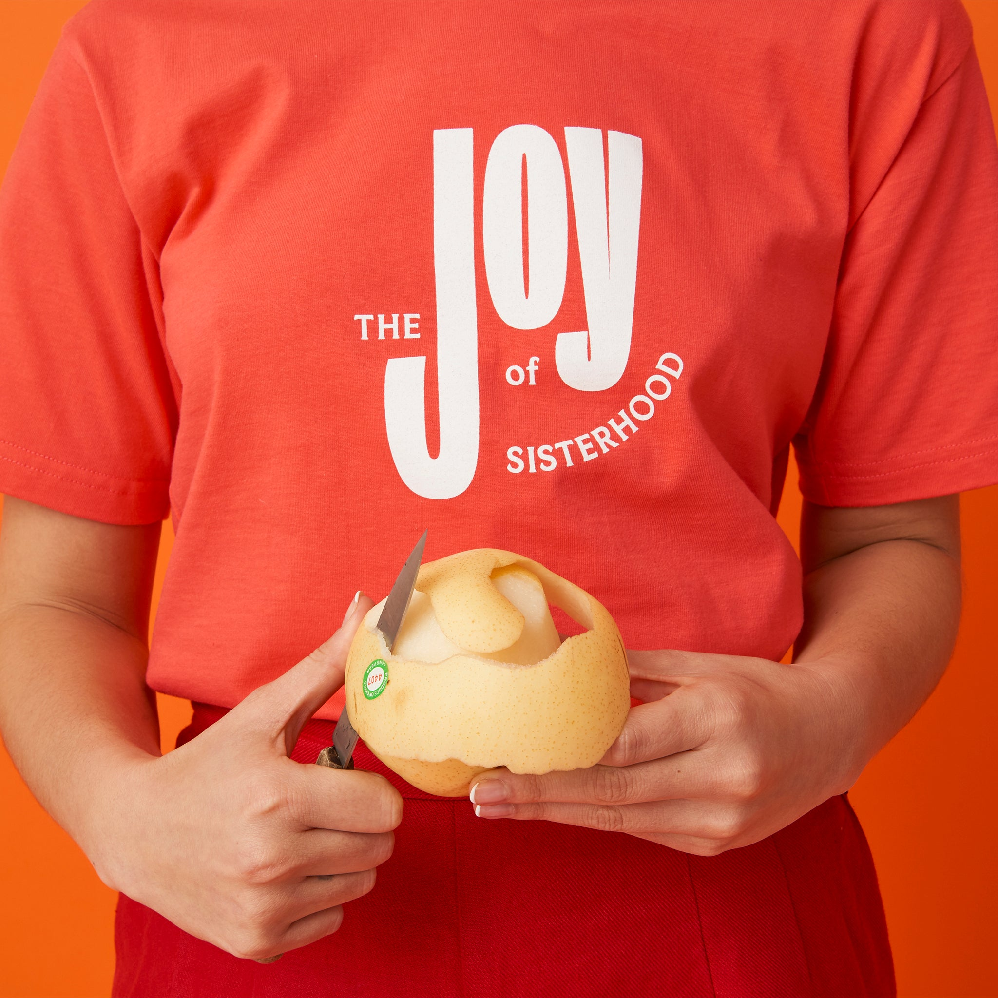 The Joy of Sisterhood Tee