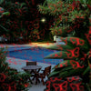 Pattern Laser - Moving, 13 Pattern, Red and Green Laser Light with Remote - Night Stars Landscape Lighting
