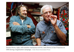 dennis peron and jack herer
