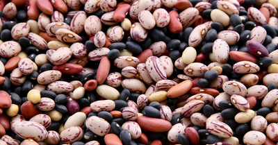 What Are Lectins & Are They Bad For Your Health?