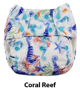 One Size Simplex Coral Reef
