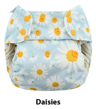 One Size Simplex Daisies
