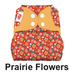 Flip Diaper Cover Prairie Flowers