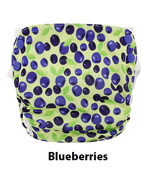 Side Snap Simplex Blueberries