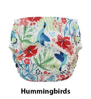 Side Snap Simplex Hummingbirds