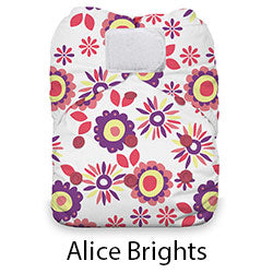 Natural AIO Hook and Loop Alice Brights