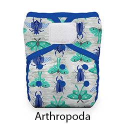 Natural Pocket Hook and Loop Arthropoda