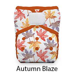 Thirsties Natural Pocket Diaper Autumn Blaze