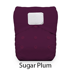 Thirsties Natural Pocket Diaper Sugar Plum Hook and Loop