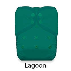 Thirsties Pocket Diaper Lagoon