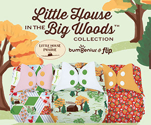 Little House in the Big Woods collection