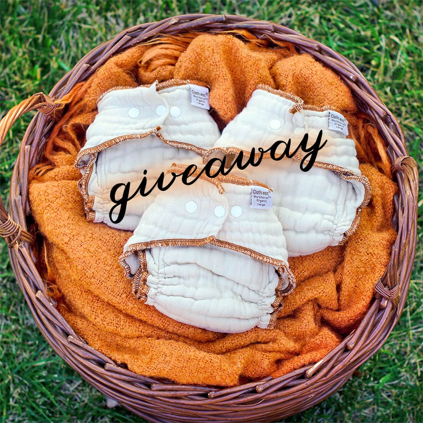 Giveaway for 3 Workhorse diapers