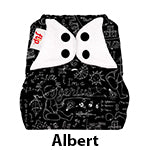 Flip Diaper Cover Albert