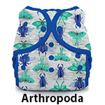 Duo Wrap Snap Arthropoda
