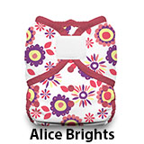 Duo Wrap Hook and Loop Alice Brights