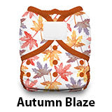 Duo Wrap Hook and Loop Autumn Blaze