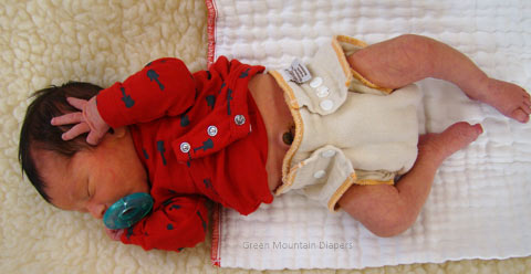 newborn baby in workhorse cloth diaper