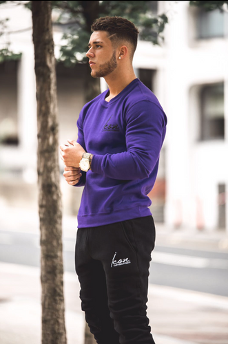 ICON Team Sweatshirt - Purple