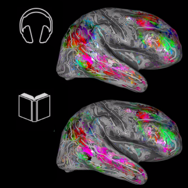A Map Of The Brain Can Tell What You're Reading