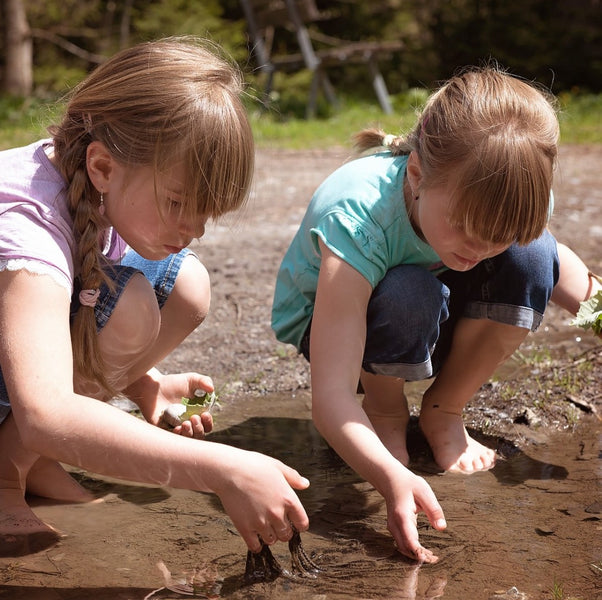 Young Children Would Rather Explore Than Get Rewards