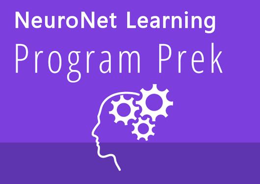 NeuroNet PreK Program