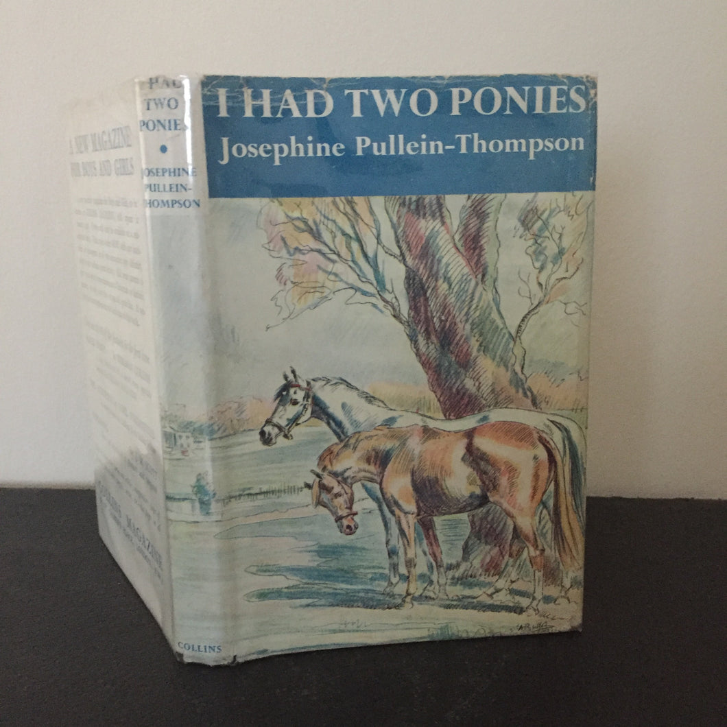 I Had Two Ponies