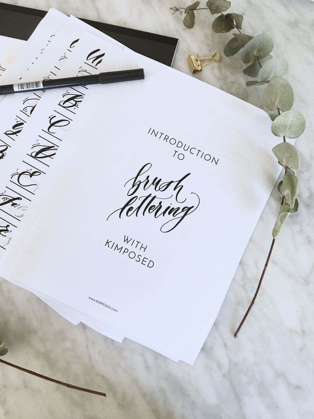 Introduction to Brush Lettering Workbook 2.0